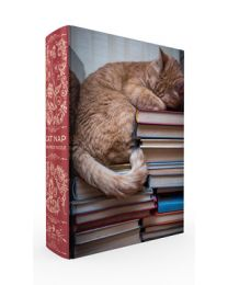 Cat Nap Book Box Puzzle