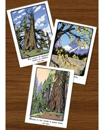 John Muir Tree Assortment
