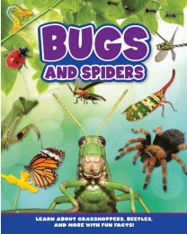 Bugs and Spiders